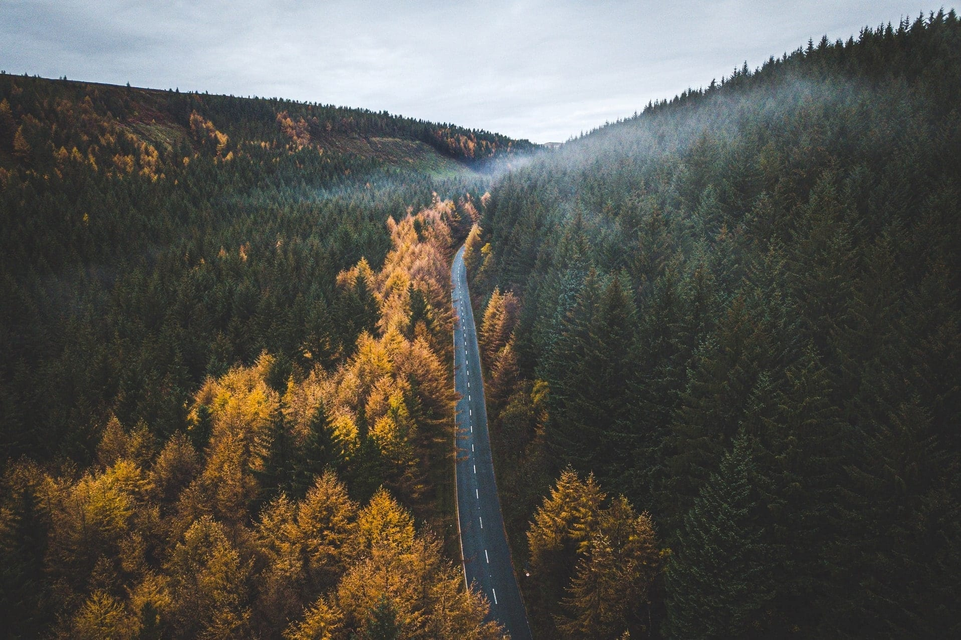 road-going-through-forest-in-autumn-from-above-snake-pass-peak-district-best-scenic-drives-in-uk